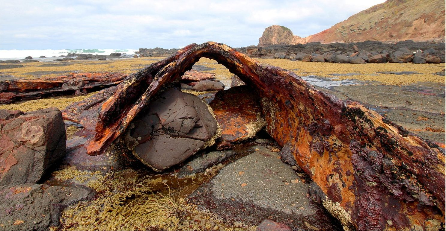 Wales Carcass. Limited Edition Print of the remains of three mastered steel ship of 2,876 tons and 93 metres S. S. Speke, built in Wales, 1891, that drifted broadside on to a reef to the east of Kitty Miller Bay, Phillip Island, Australia, Victoria on 22nd February 1906.